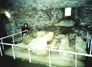 Whithorn Graves in Crypt